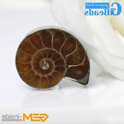 Big Conch fossil White Gold Plated Rings Pendant Sets Of Jew